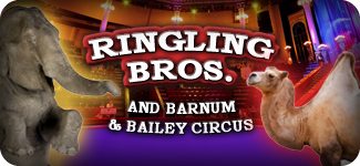 Ringling Bros Tickets image