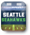 Seattle Seahawks Ticket Graphic