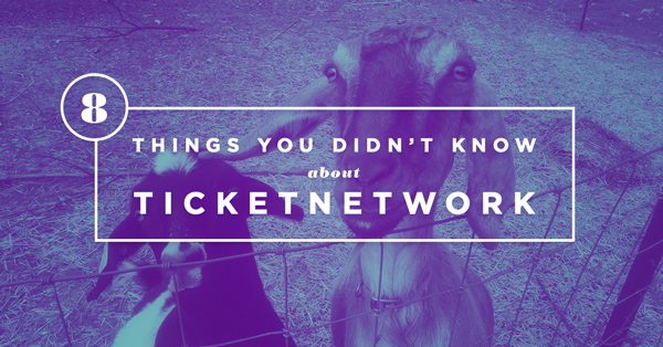 8 Things You Didn't Know About TN.com