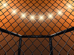 MMA fight cage